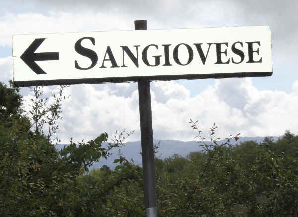 Sangiovese_sign