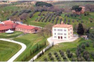 Fattoria del Cerro – Great Tuscan Bargain