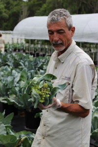 Jose@Sweetgrass Farms with freshly cut romanesco